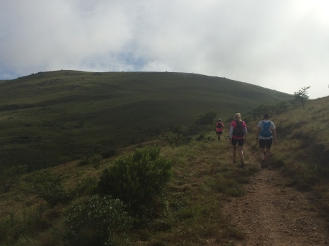Addo Elephant Trail Run